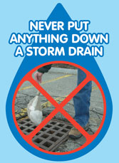 Never put anything down a storm drain