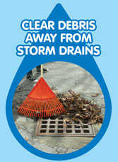 Clear debris away from storm drains